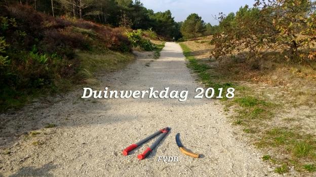 Duinwerkdag 2018