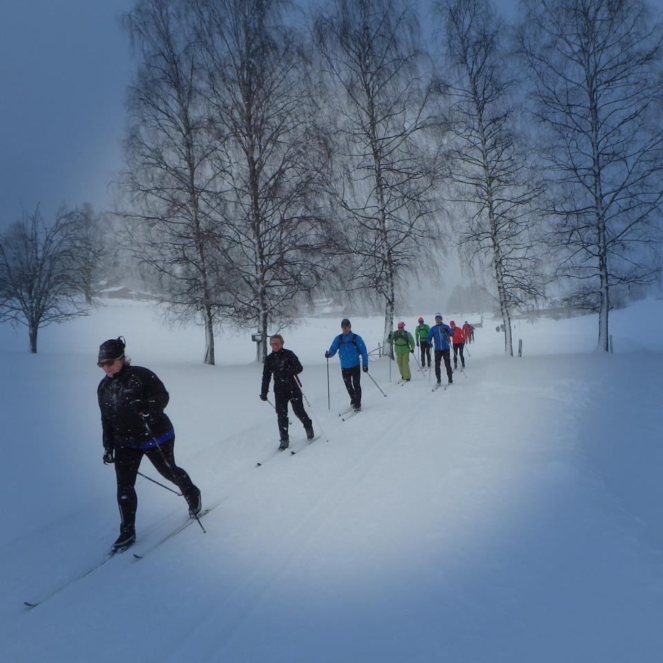 611 - Hoe mooi kan langlaufen zijn GENOMINEERD