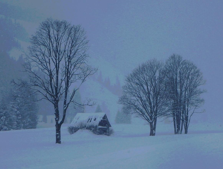 612 - Hoe winters wil je het hebben?EERSTE PRIJS