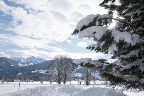 678 - Prachtige sneeuw voor hotel Almfrieden