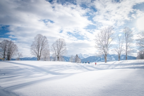 680 - Winter wonderland Ramsau