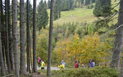 Nordic Walking 3