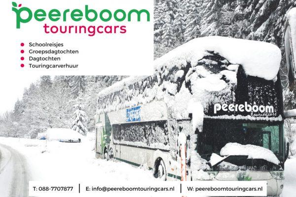 Peereboom